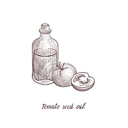 vector drawing tomato seed oil