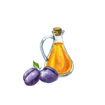 watercolor drawing prune kernel oil