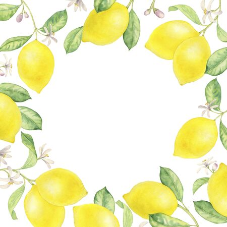 watercolor frame with drawing branches of lemon tree with leaves , cover design for gift card or label, hand drawn illustration