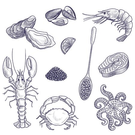 vector drawing seafoods, lobster,oysters, shrimp and octopus, hand drawn illustration Ilustrace