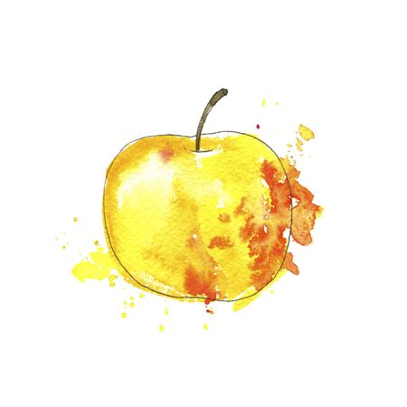 watercolor drawing yellow apple with paint splashes, hand drawn illustration
