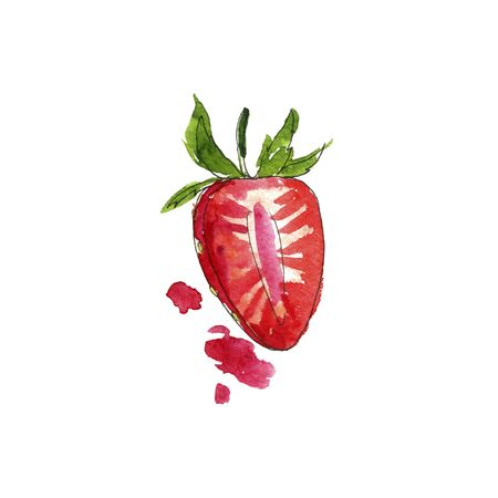 watercolor drawing half of strawberry with paint splashes, hand drawn illustration