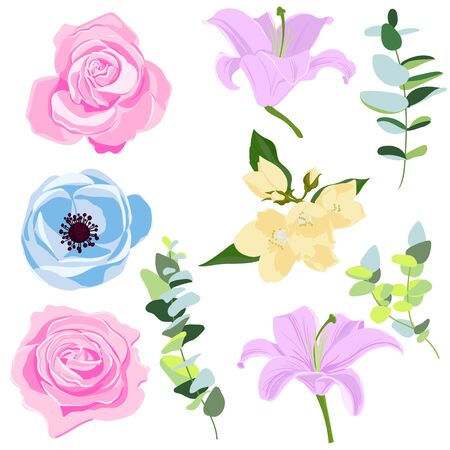 vector drawing flowers and leaves, roses, lilies and anemone ,isolated floral elements at white background, hand drawn illustration