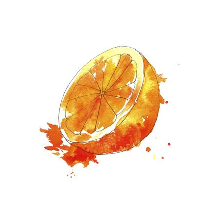 watercolor drawing orange with paint splashes , hand drawn illustration