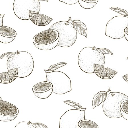 vector seamless pattern with drawing citrus fruit Çizim