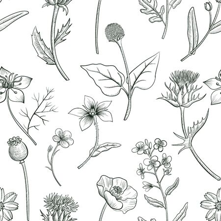 seamless pattern with drawing herbs and flowers Çizim