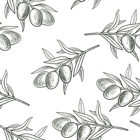 vector seamless pattern with drawing olive branch