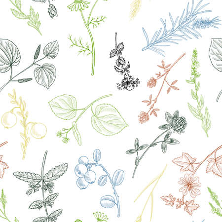 vector drawing floral vintage seamless pattern