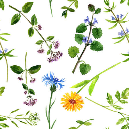 watercolor drawing floral background