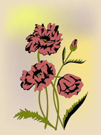 red poppies on a yellow background Illustration