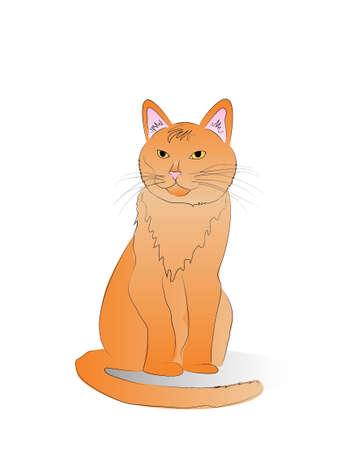 Orange Cat Vector Illustration isolated on a white background Illustration