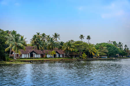 Tropical Indian village with coconut palm trees Kerala, India