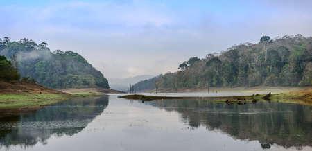 Morning landscape in National park Periyar Wildlife Sancturary, Kumily, Kerala, India
