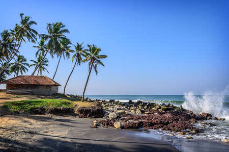 indian village: Tropical Indian village with coconut palm trees near the road and blue ocean in Varkala, Kerala, India Stock Photo