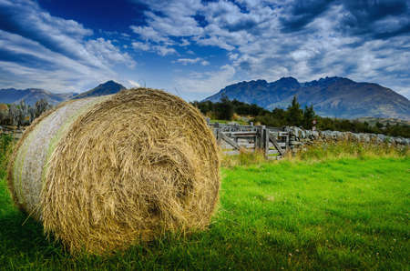 hay stack in a summer field
