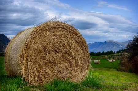 rebelling: Close-up haystack in a field in summer against a background of mountains in New Zealand