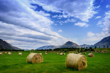 rebelling: Haystack in a field in summer against a background of mountains in New Zealand Stock Photo