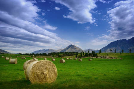 Haystack in a field in summer against a background of mountains in New Zealand Reklamní fotografie