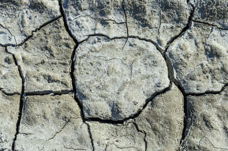 cracked earth: Dry cracked earth background.