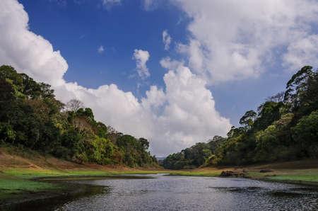 Morning landscape in National park Periyar Wildlife Sancturary, Kumily, Kerala, India photo