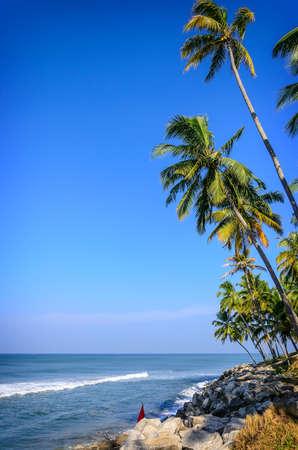 varkala: Tropical Background. Palms on a background of blue sky near  blue ocean in Varkala, Kerala, India