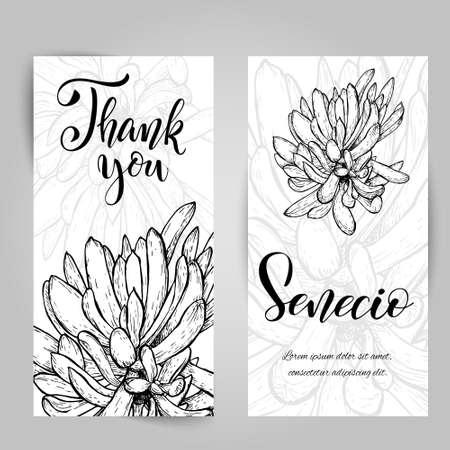Hand drawn senecio cactus themed card template vector illustration