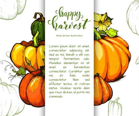 Dibujo de calabaza colorido dibujado a mano ilustración. Ilustración de estilo grabado vegetal. Bosquejo detallado de comida vegetariana. Producto del mercado agrícola.