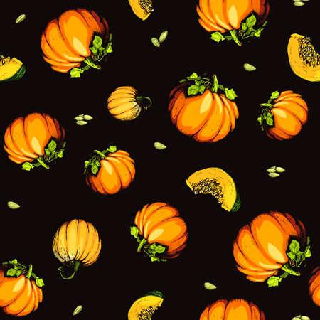 Colorful pumpkin sketch hand drawn illustration. Farm market product.