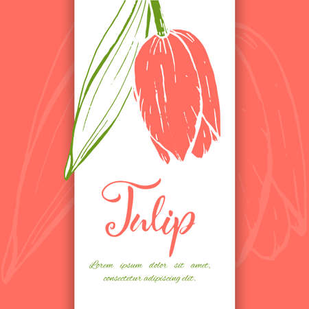 Floral background. Hand drawn vector botanical illustration. Template greeting card, wedding invitation banner with spring flowers. Sketch linear tulips blossom.Engraved style illustration. Ilustração