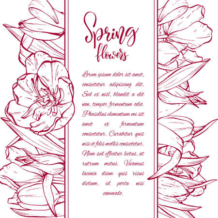 Floral background. Hand drawn vector botanical illustration. Template greeting card, wedding invitation banner with spring flowers. Sketch linear tulips blossom.Engraved style illustration. Imagens - 122881078