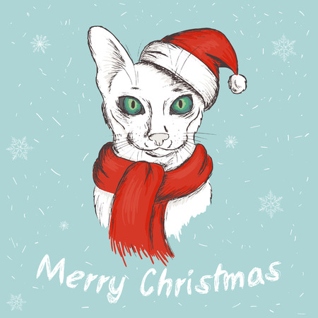 eyed: vector illustration of christmas green eyed cat. It is wearing a red christmas hat and a scarf.