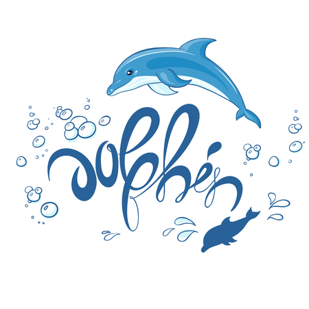 dolphin: vector hand drawn printable lettering illustration with jumping dolphin, bubbles and splash. Can be printed on t-shirts, pillow, poster, mug, bag.