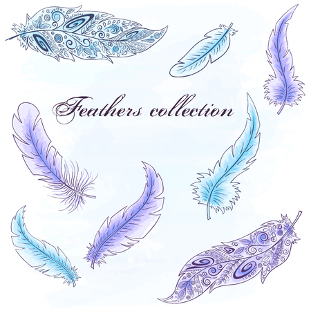 american dream: Vector hand drawn set of feathers. Can be used for creating of your own awesome product.