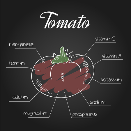 nutrient: vector illustration of nutrient list for tomato.