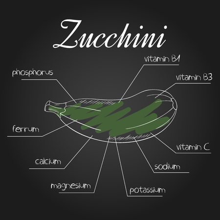 nutrient: vector illustration of nutrient list for zucchini.