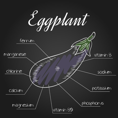 nutrient: vector illustration of nutrient list for eggplant.