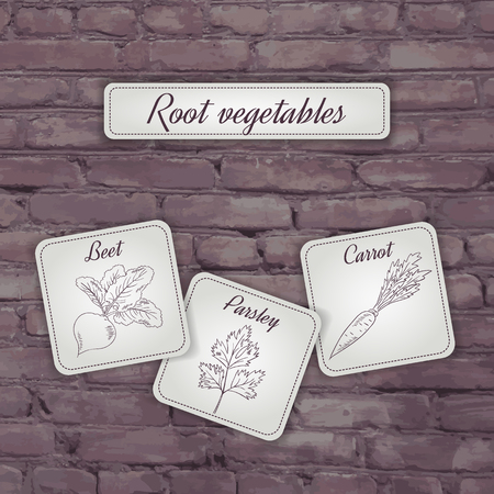 beet root: vector illustration of flashcard with root vegetables: beet, carrot and parsley on a brick backdrop.