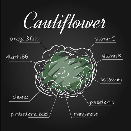 nutrientes: ilustración vectorial de la lista de nutrientes de la coliflor en el contexto pizarra.