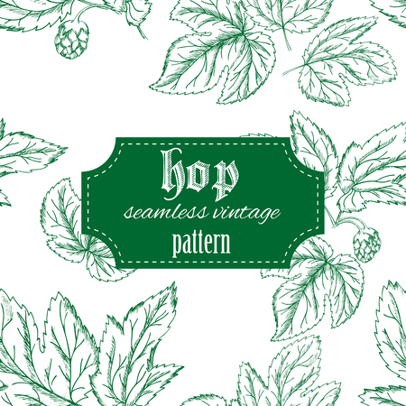 hop cone: vector hand drawn vintage seamless pattern with leaves and cone of hop.