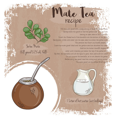 mate: vector hand drawn illustration of mate tea recipe with list of ingredients.