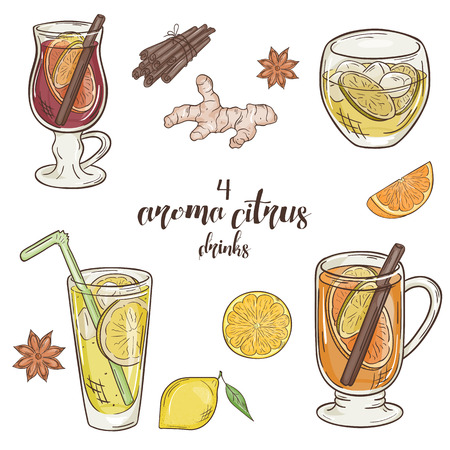 orange fruit: vector printable illustration with set of isolated cup of citrus drinks. Contains mulled wine, punch, lemonade and grog.