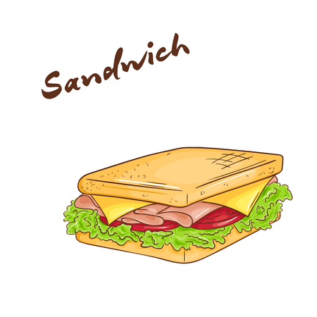 gourmet dinner: vector illustration of an isolated cartoon hand drawn fast food. Sandwich. Take it away