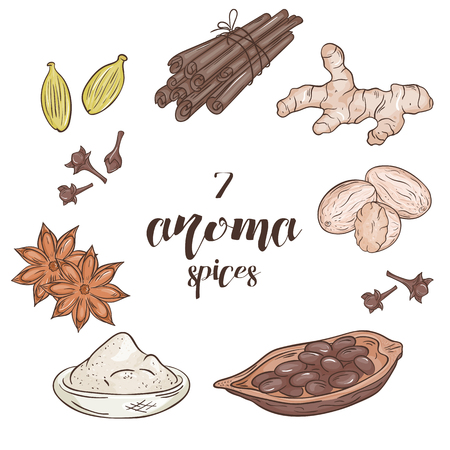aroma: vector set of 6 isolated cartoon hand drawn aroma spices Illustration