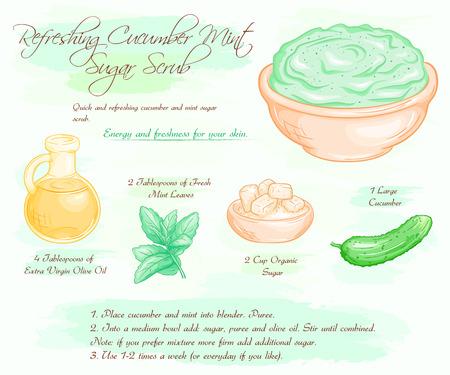 scrub: vector hand drawn illustration of mint cucumber refreshing sugar scrub recipe. Illustration
