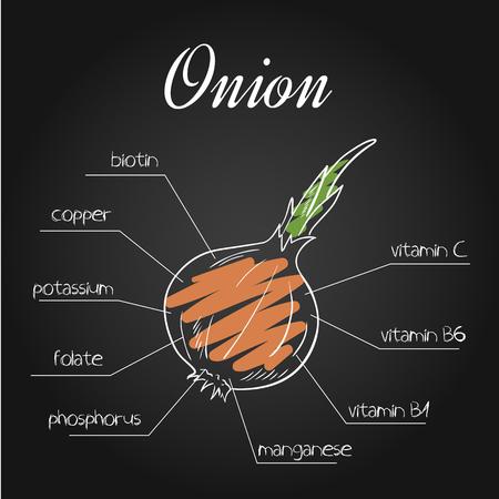 illustration of nutrients list for  onion on chalkboard backdrop.