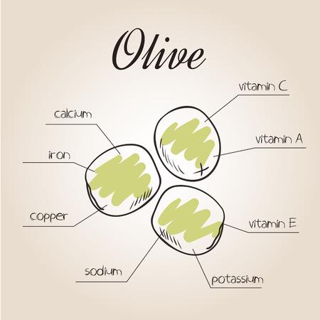 nutrientes: ilustración vectorial de la lista de nutrientes de oliva.