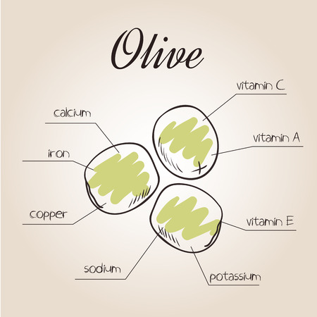 nutrients: vector illustration of nutrients list for olive. Illustration