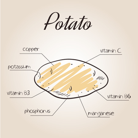nutrients: vector illustration of nutrients list for potato.