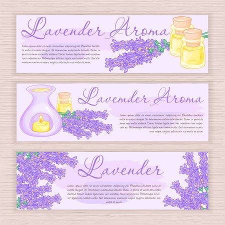 lavender oil: vector hand drawn banner with lavender and oil burner. Illustration