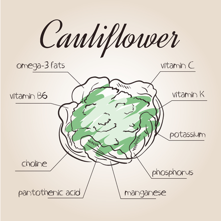 nutrients: vector illustration of nutrients list for cauliflower.